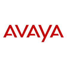 Avaya AWTS Netlink AVPP 20 RHS