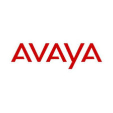 Avaya Handset 3641 Swivel Belt Clip
