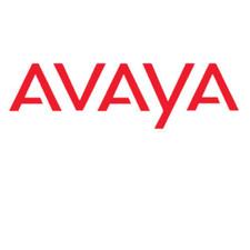 Avaya DECT Inbuilding Wireless Server R2 Front Mounting Kit